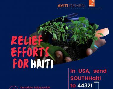 Tremblement de terre en Haïti : Aidez FOKAL à soutenir les organisations de la péninsule du Sud du pays